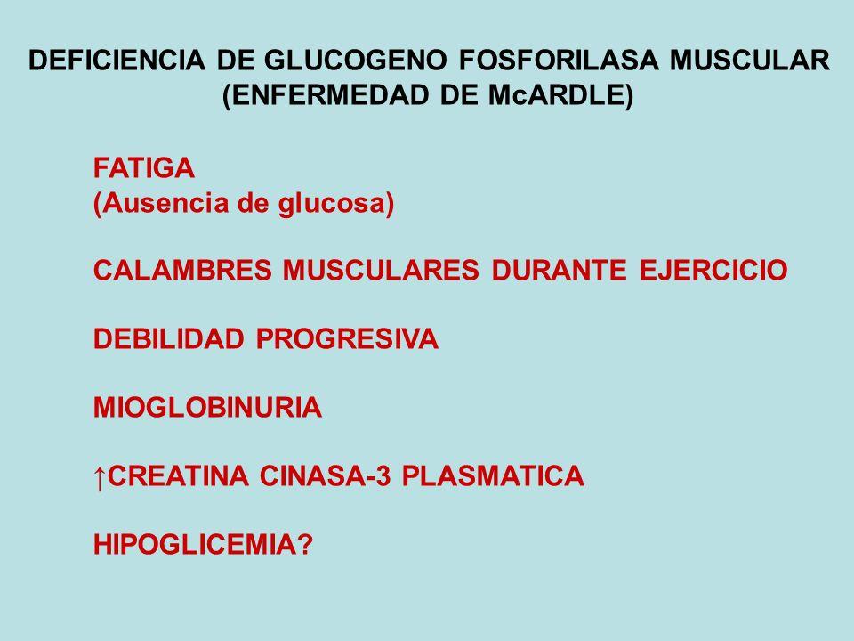 DEFICIENCIA DE GLUCOGENO FOSFORILASA MUSCULAR (ENFERMEDAD DE McARDLE) FATIGA (Ausencia de glucosa) CALAMBRES MUSCULARES DURANTE EJERCICIO DEBILIDAD PR