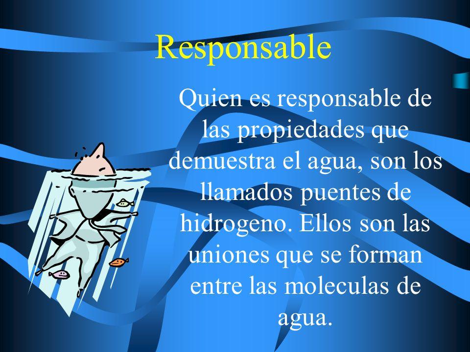 Responsable Quien es responsable de las propiedades que demuestra el agua, son los llamados puentes de hidrogeno. Ellos son las uniones que se forman