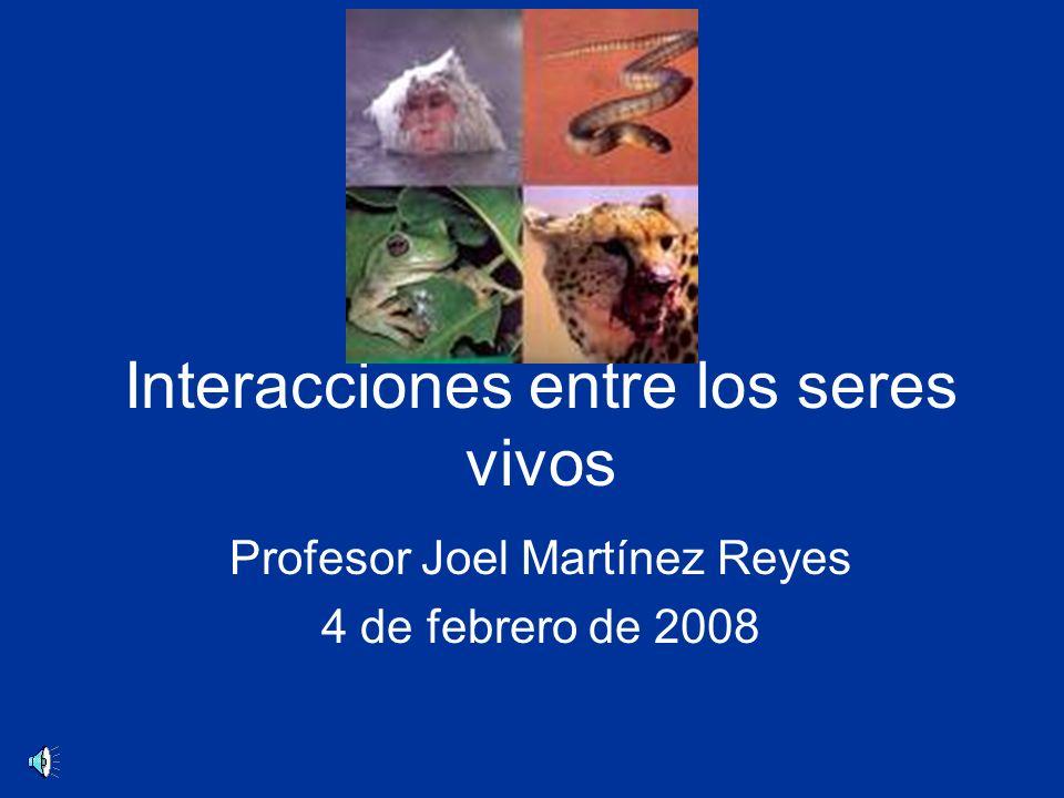 Interacciones entre los seres vivos Profesor Joel Martínez Reyes 4 de febrero de 2008