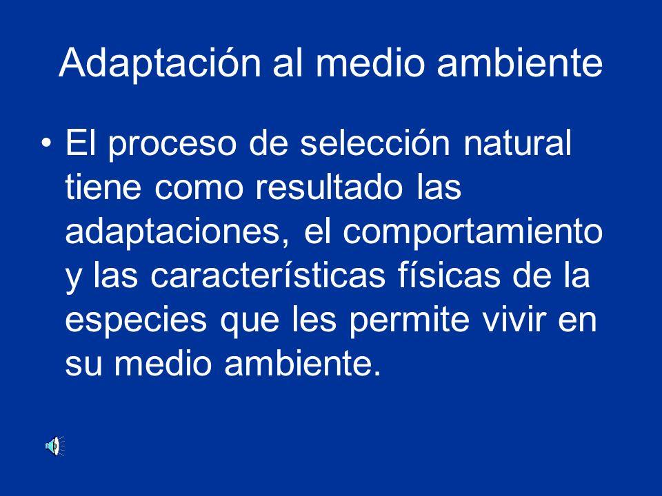 Adaptación al medio ambiente El proceso de selección natural tiene como resultado las adaptaciones, el comportamiento y las características físicas de la especies que les permite vivir en su medio ambiente.