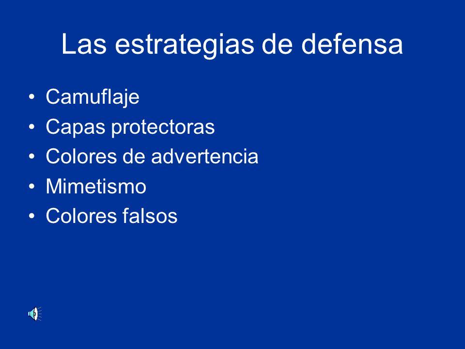 Las estrategias de defensa Camuflaje Capas protectoras Colores de advertencia Mimetismo Colores falsos