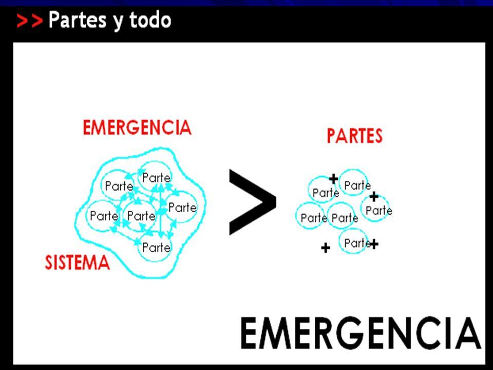 En muchos sistemas complejos se generan propiedades emergentes, que son el producto del conjunto de las relaciones entre las partes.