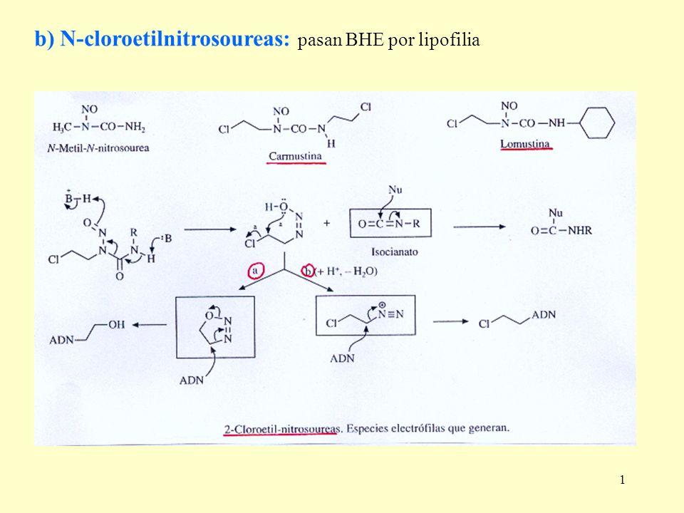 1 b) N-cloroetilnitrosoureas: pasan BHE por lipofilia