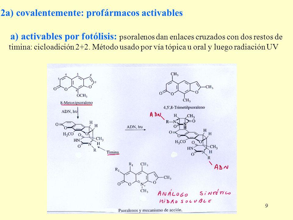 9 2a) covalentemente: profármacos activables a) activables por fotólisis: psoralenos dan enlaces cruzados con dos restos de timina: cicloadición 2+2.