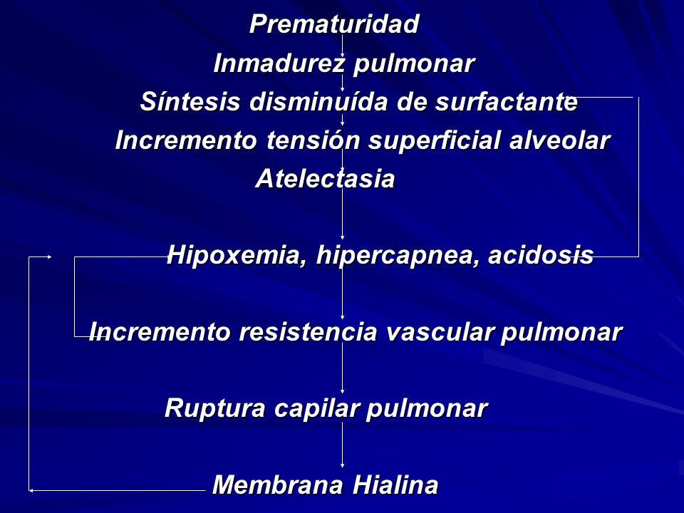 Prematuridad Prematuridad Inmadurez pulmonar Inmadurez pulmonar Síntesis disminuída de surfactante Síntesis disminuída de surfactante Incremento tensión superficial alveolar Incremento tensión superficial alveolarAtelectasia Hipoxemia, hipercapnea, acidosis Hipoxemia, hipercapnea, acidosis Incremento resistencia vascular pulmonar Incremento resistencia vascular pulmonar Ruptura capilar pulmonar Membrana Hialina