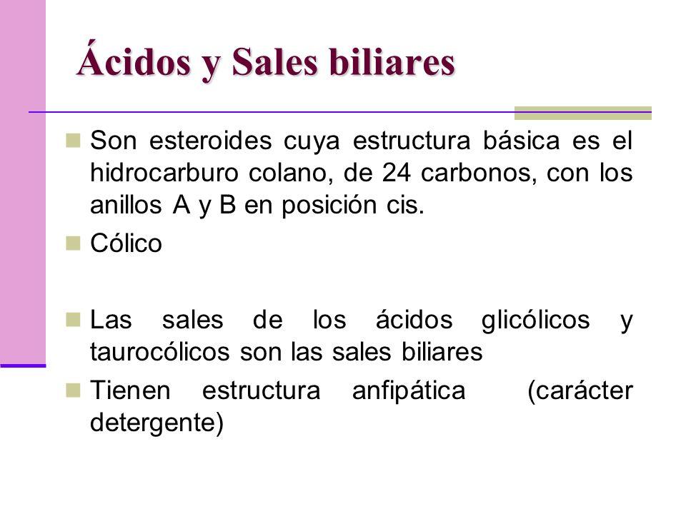 Ácidos y Sales biliares Son esteroides cuya estructura básica es el hidrocarburo colano, de 24 carbonos, con los anillos A y B en posición cis.