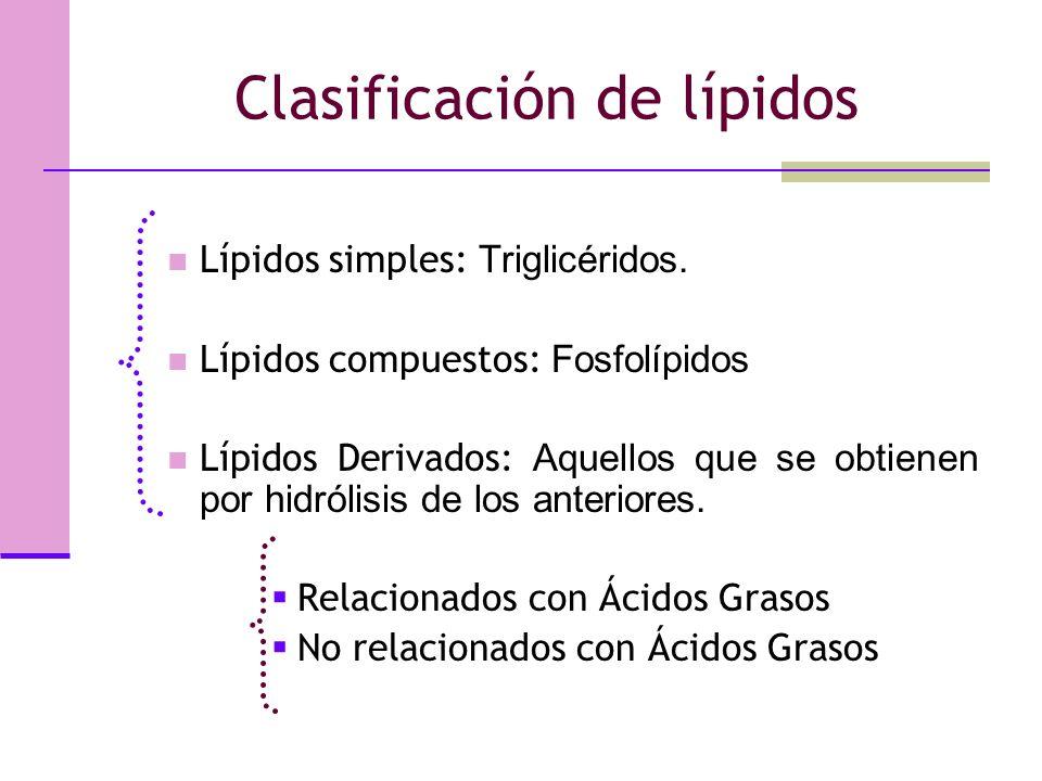 Clasificación de lípidos Lípidos simples: Triglicéridos.