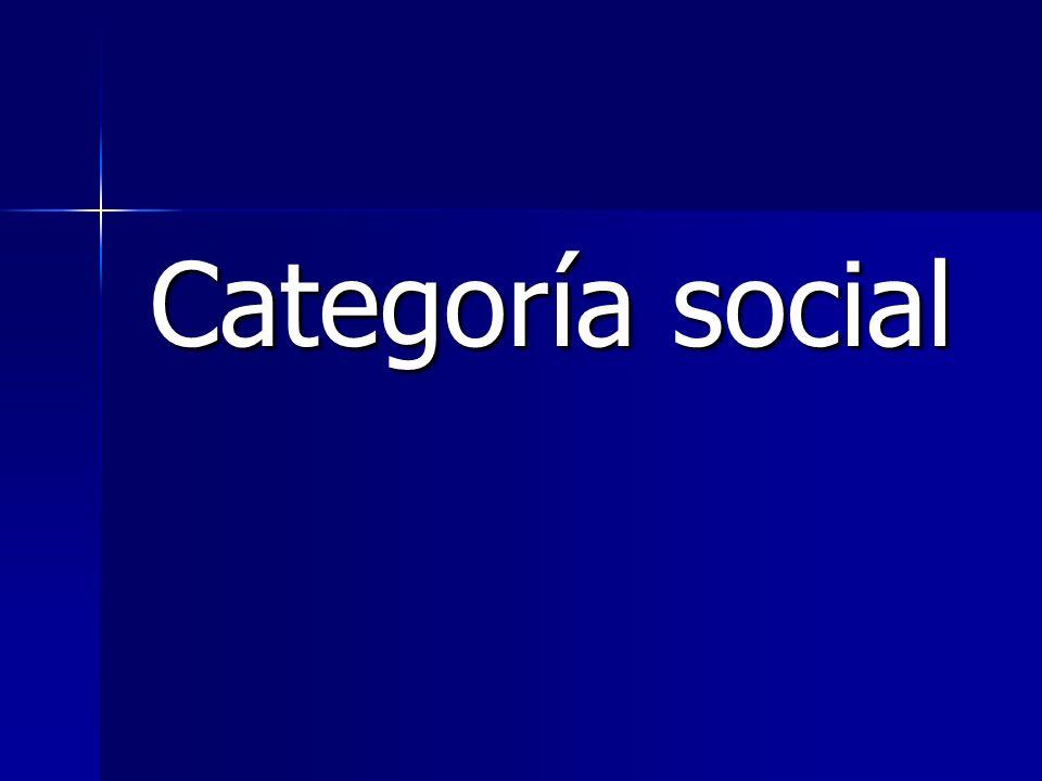 Categoría social