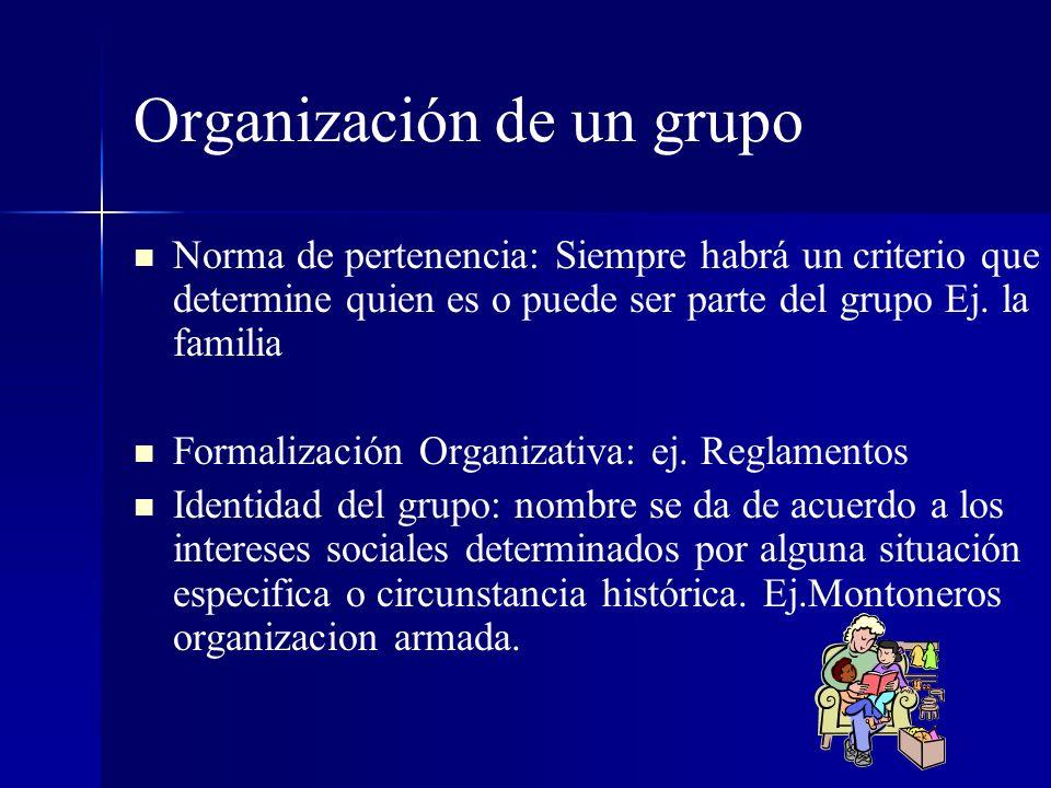 Organización de un grupo Norma de pertenencia: Siempre habrá un criterio que determine quien es o puede ser parte del grupo Ej. la familia Formalizaci