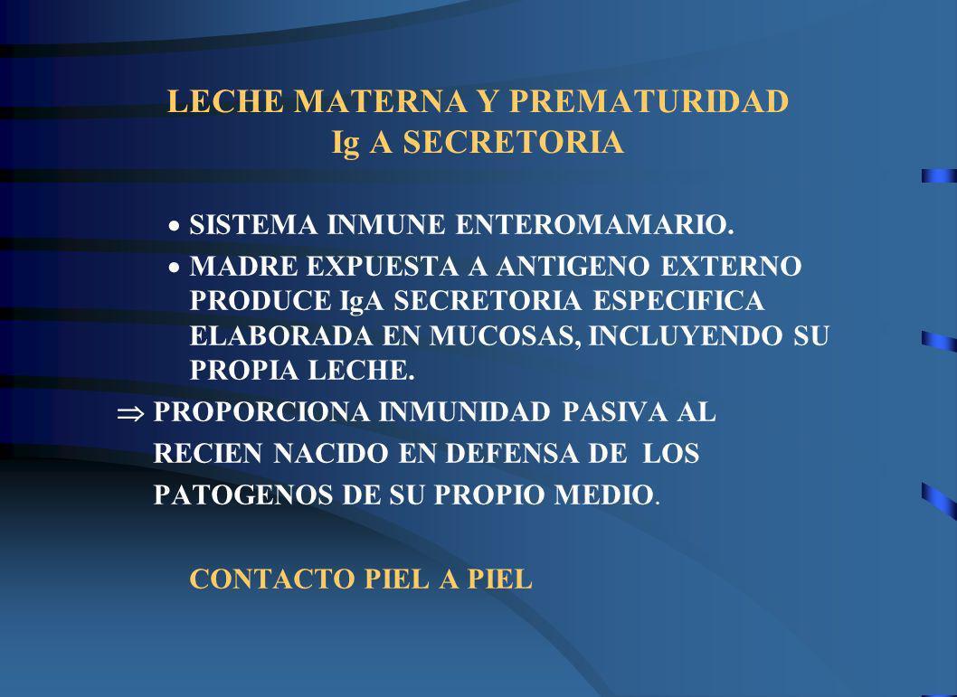 LECHE MATERNA Y PREMATURIDAD Ig A SECRETORIA SISTEMA INMUNE ENTEROMAMARIO. MADRE EXPUESTA A ANTIGENO EXTERNO PRODUCE IgA SECRETORIA ESPECIFICA ELABORA