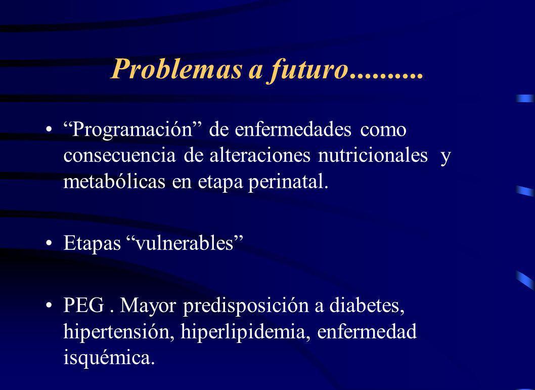 Problemas a futuro.......... Programación de enfermedades como consecuencia de alteraciones nutricionales y metabólicas en etapa perinatal. Etapas vul