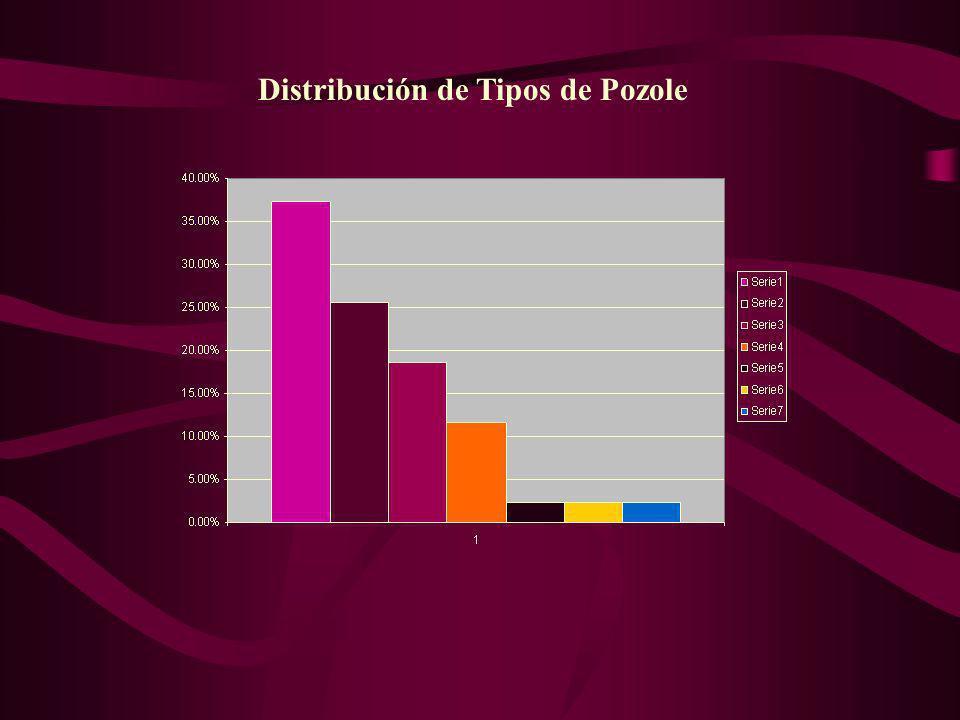 Distribución de Tipos de Pozole