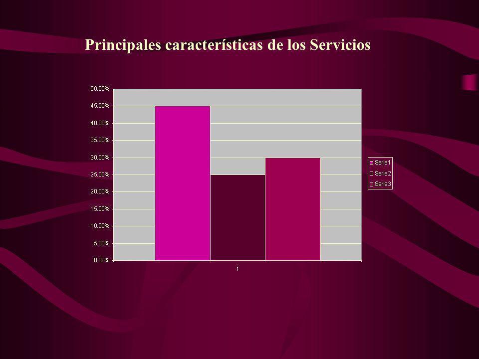 Principales características de los Servicios