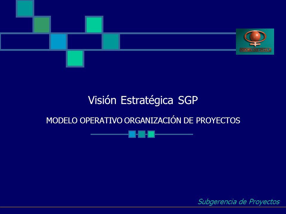 Visión Estratégica SGP MODELO OPERATIVO ORGANIZACIÓN DE PROYECTOS Subgerencia de Proyectos