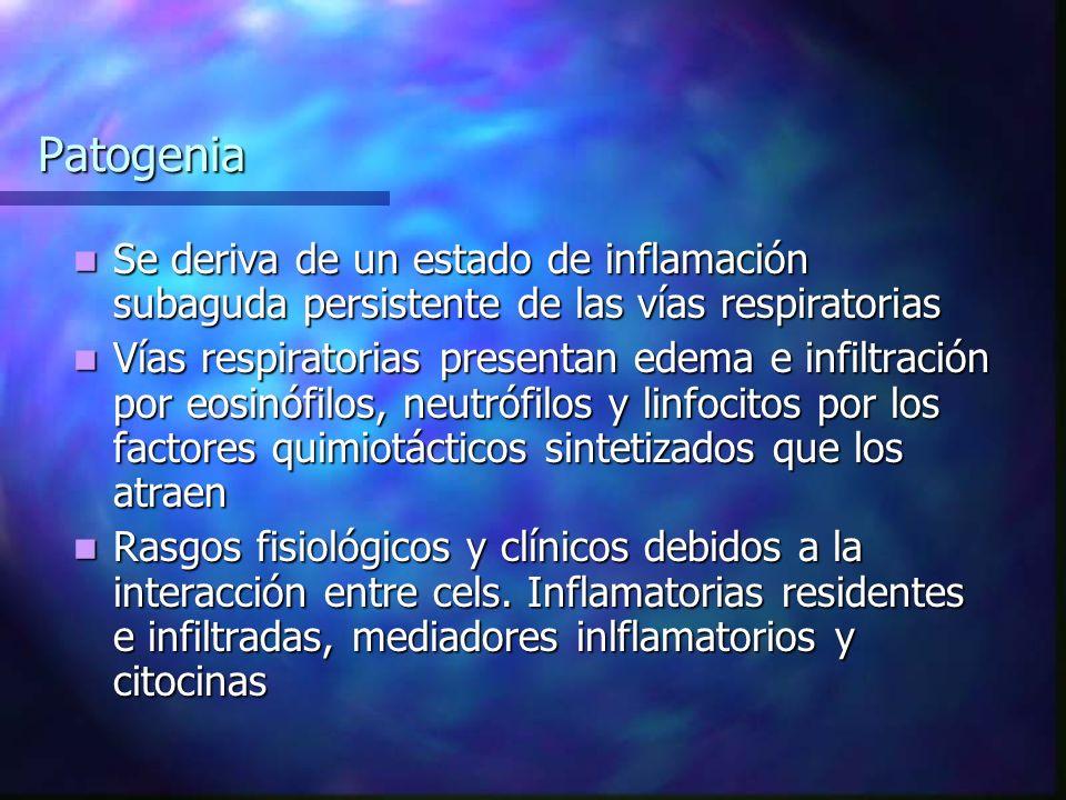 Patogenia Se deriva de un estado de inflamación subaguda persistente de las vías respiratorias Se deriva de un estado de inflamación subaguda persistente de las vías respiratorias Vías respiratorias presentan edema e infiltración por eosinófilos, neutrófilos y linfocitos por los factores quimiotácticos sintetizados que los atraen Vías respiratorias presentan edema e infiltración por eosinófilos, neutrófilos y linfocitos por los factores quimiotácticos sintetizados que los atraen Rasgos fisiológicos y clínicos debidos a la interacción entre cels.