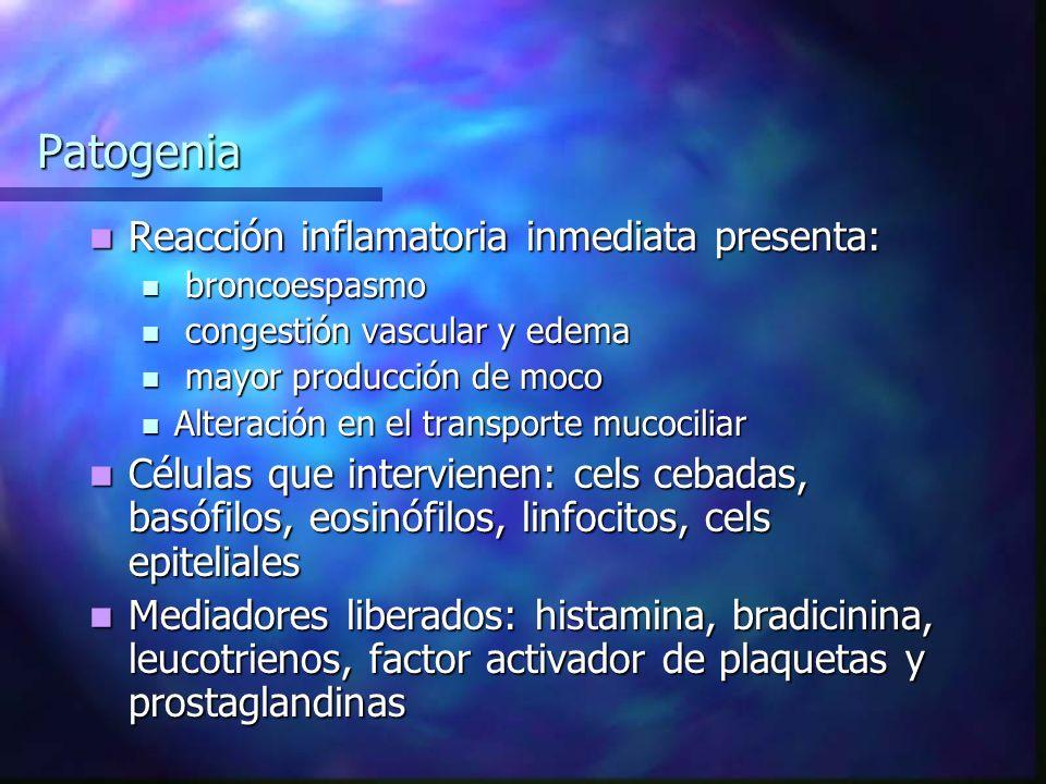 Patogenia Reacción inflamatoria inmediata presenta: Reacción inflamatoria inmediata presenta: broncoespasmo broncoespasmo congestión vascular y edema congestión vascular y edema mayor producción de moco mayor producción de moco Alteración en el transporte mucociliar Alteración en el transporte mucociliar Células que intervienen: cels cebadas, basófilos, eosinófilos, linfocitos, cels epiteliales Células que intervienen: cels cebadas, basófilos, eosinófilos, linfocitos, cels epiteliales Mediadores liberados: histamina, bradicinina, leucotrienos, factor activador de plaquetas y prostaglandinas Mediadores liberados: histamina, bradicinina, leucotrienos, factor activador de plaquetas y prostaglandinas