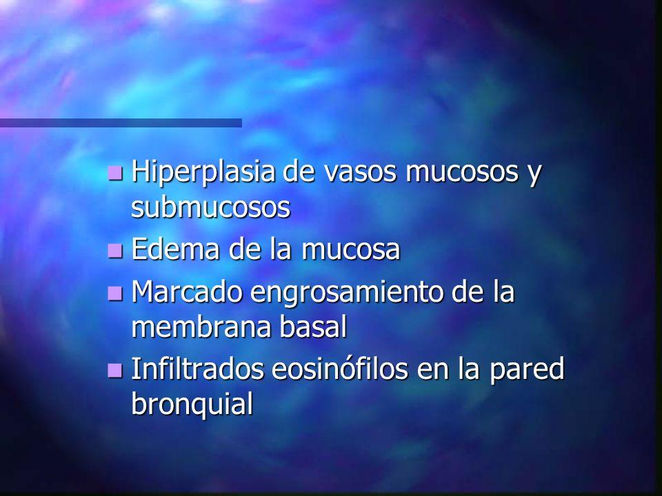 Hiperplasia de vasos mucosos y submucosos Hiperplasia de vasos mucosos y submucosos Edema de la mucosa Edema de la mucosa Marcado engrosamiento de la membrana basal Marcado engrosamiento de la membrana basal Infiltrados eosinófilos en la pared bronquial Infiltrados eosinófilos en la pared bronquial