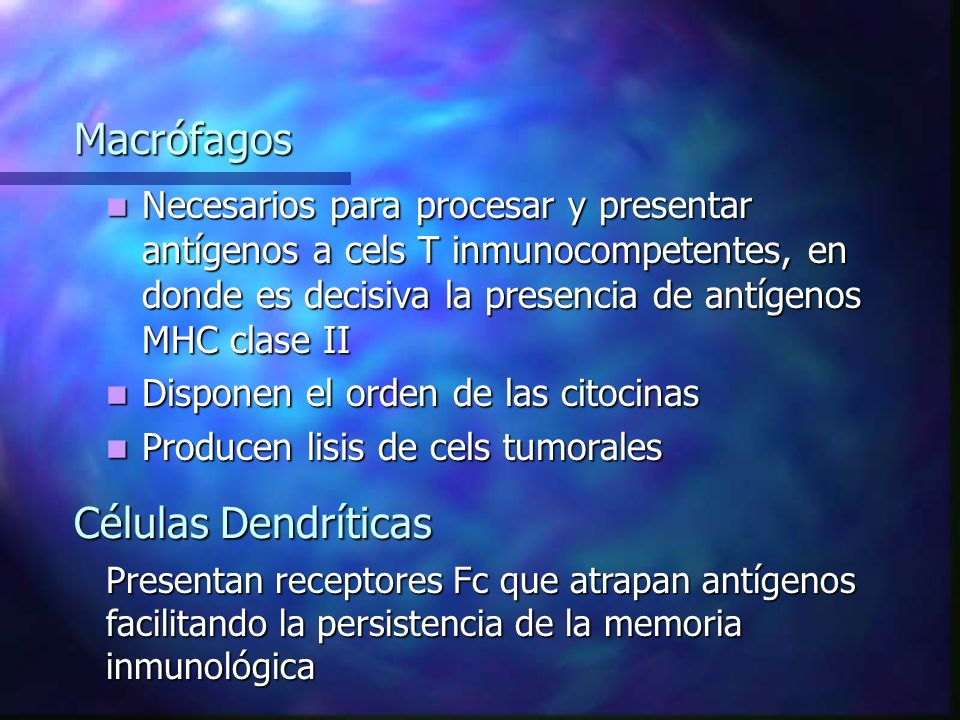 Macrófagos Necesarios para procesar y presentar antígenos a cels T inmunocompetentes, en donde es decisiva la presencia de antígenos MHC clase II Necesarios para procesar y presentar antígenos a cels T inmunocompetentes, en donde es decisiva la presencia de antígenos MHC clase II Disponen el orden de las citocinas Disponen el orden de las citocinas Producen lisis de cels tumorales Producen lisis de cels tumorales Células Dendríticas Presentan receptores Fc que atrapan antígenos facilitando la persistencia de la memoria inmunológica