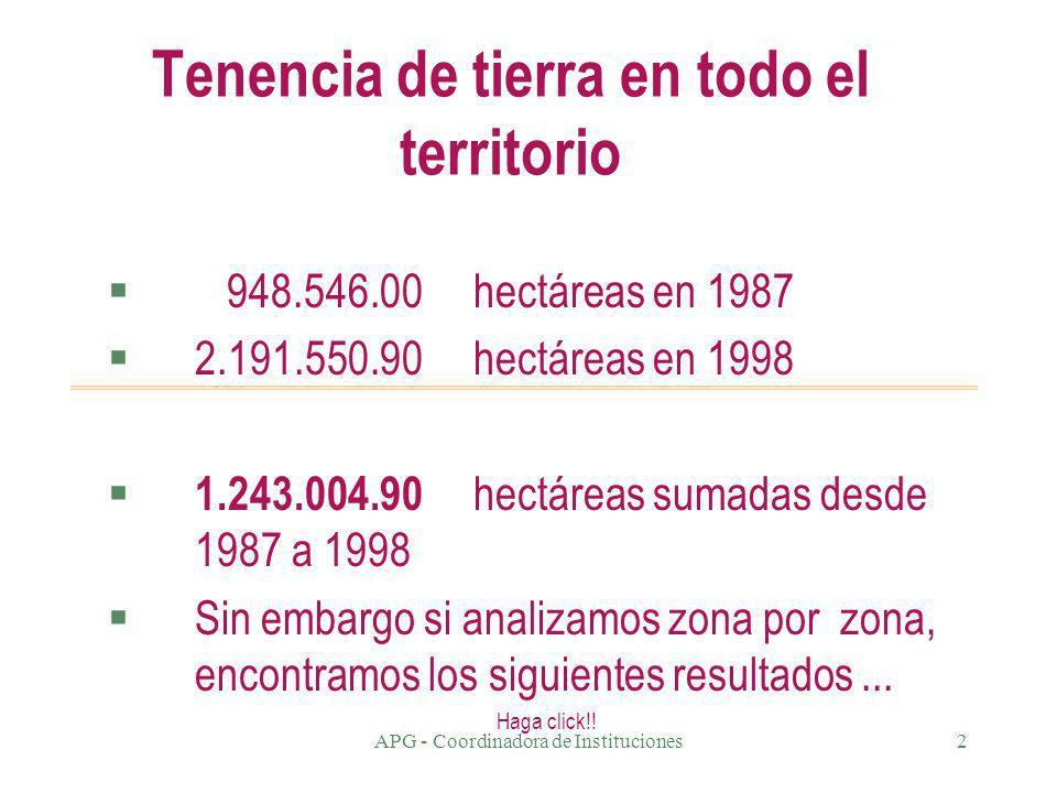 APG - Coordinadora de Instituciones1 Tierra, territorio y economía 1999 Edición electrónica: Francisco Canedo C.