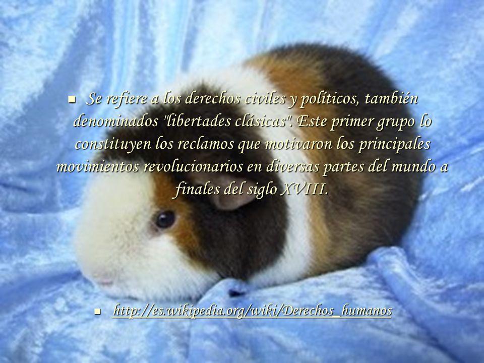 Pacto Internacional de Derechos Civiles y Políticos Pacto Internacional de Derechos Civiles y Políticos http://www.unhchr.ch/spanis h/html/menu3/b/a_ccpr_sp.ht m http://www.unhchr.ch/spanis h/html/menu3/b/a_ccpr_sp.ht m http://www.unhchr.ch/spanis h/html/menu3/b/a_ccpr_sp.ht m http://www.unhchr.ch/spanis h/html/menu3/b/a_ccpr_sp.ht m