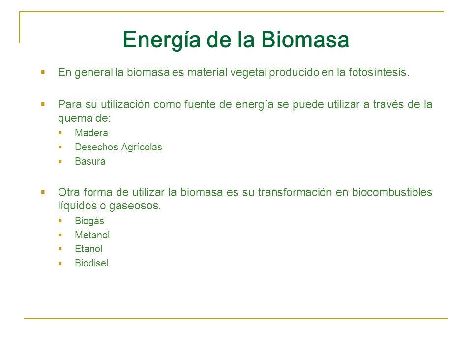 Energía de la Biomasa En general la biomasa es material vegetal producido en la fotosíntesis. Para su utilización como fuente de energía se puede util
