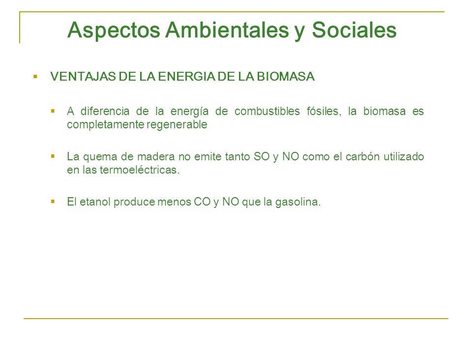 Aspectos Ambientales y Sociales VENTAJAS DE LA ENERGIA DE LA BIOMASA A diferencia de la energía de combustibles fósiles, la biomasa es completamente r