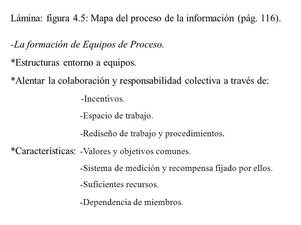 Lámina: figura 4.5: Mapa del proceso de la información (pág. 116). -La formación de Equipos de Proceso. *Estructuras entorno a equipos. *Alentar la co