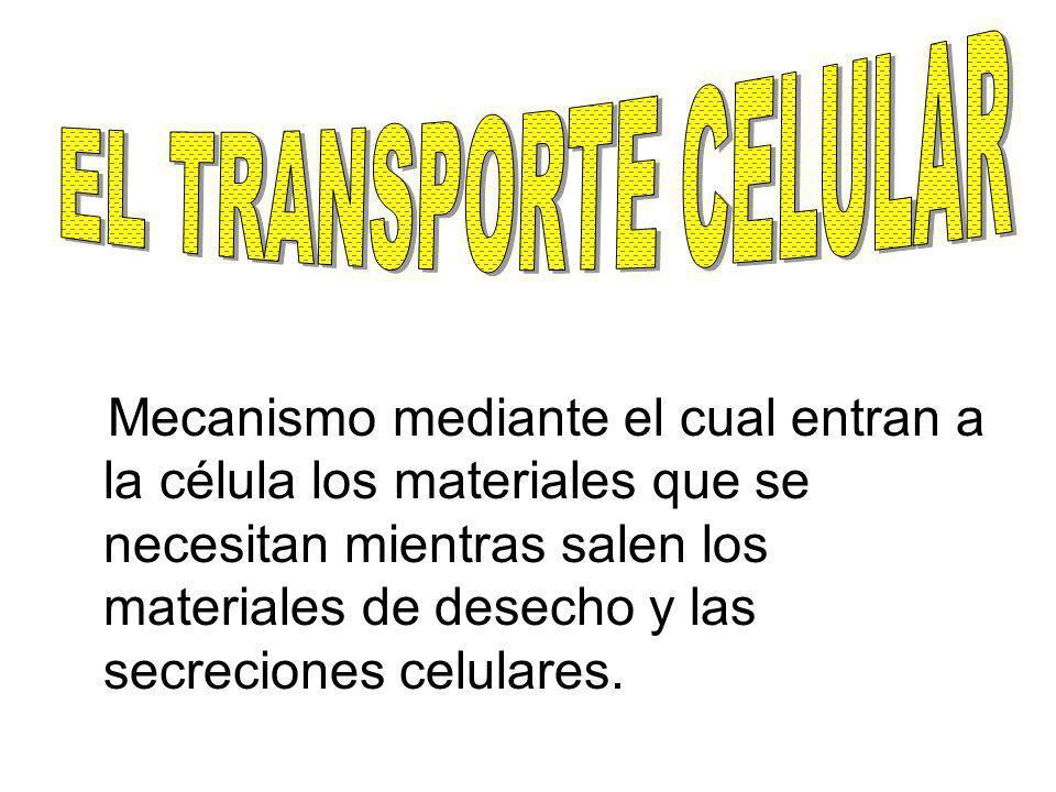 Mecanismo mediante el cual entran a la célula los materiales que se necesitan mientras salen los materiales de desecho y las secreciones celulares.