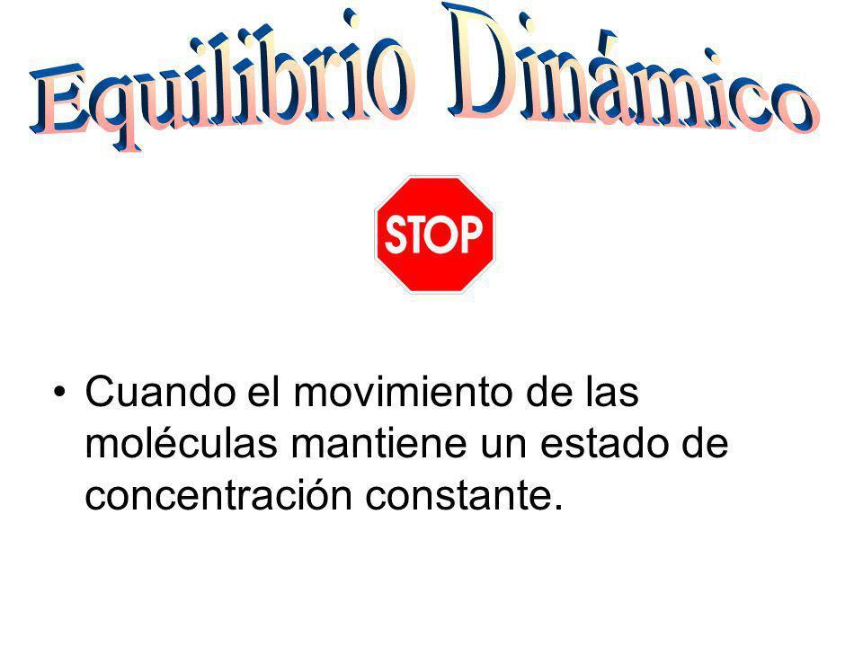 Cuando el movimiento de las moléculas mantiene un estado de concentración constante.