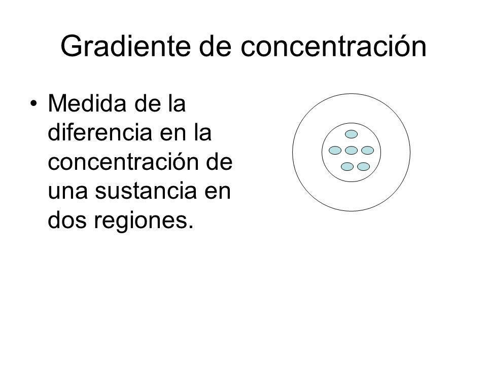 Gradiente de concentración Medida de la diferencia en la concentración de una sustancia en dos regiones.
