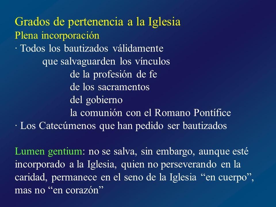 Bautizados Profesión de fe Sacramentos Gobierno Comunión con el Papa Catecúmenos Practican religión no cristiana No practican religión alguna Plenamente incorporados a la Iglesia de Cristo Iglesias orientales Comunidades protestantes