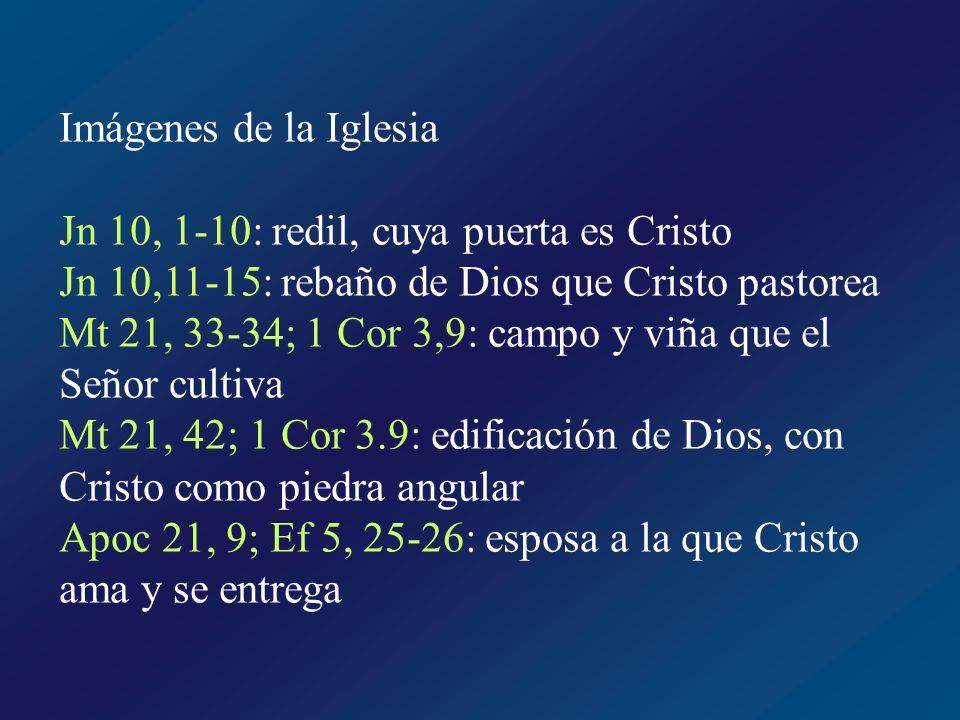 Pueblo de Dios El Señor pactó una alianza con el antiguo Pueblo de Dios Ex 19,6: vosotros seréis para mí un pueblo de sacerdotes y una nación santa