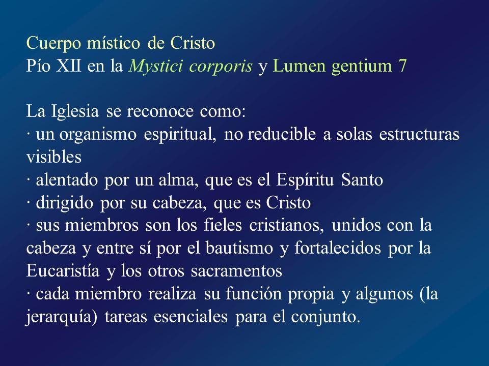 San Agustín: Jesucristo, y la Iglesia, la cabeza y los miembros, conforman el Cristo total