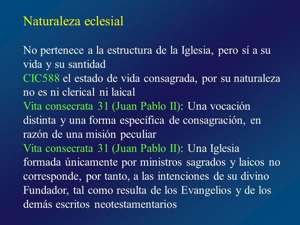 Clérigos Laicos Corrientes Vida consagrada Laicos consagrados