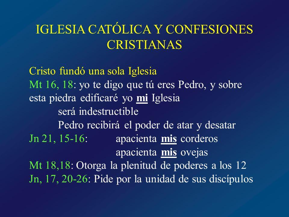 Cristo fundó una sola Iglesia En algunas parábolas Jn 10, 1-16: El Buen Pastor Jn 17, 20-26: La vid y los sarmientos Mt 13, 47-50: Red barredera Mc 4, 30-33: Grano de mostaza Epístolas 1Pt 2,10: …sois el pueblo de Dios Rom 12,5: … somos un solo cuerpo en Cristo Lumen gentium: La única Iglesia de Cristo…subsiste en la Iglesia católica, gobernada por el sucesor de Pedro y por los obispos en comunión con él