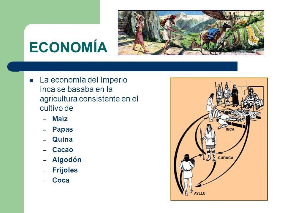 ECONOMÍA La economía del Imperio Inca se basaba en la agricultura consistente en el cultivo de – Maíz – Papas – Quina – Cacao – Algodón – Fríjoles – C