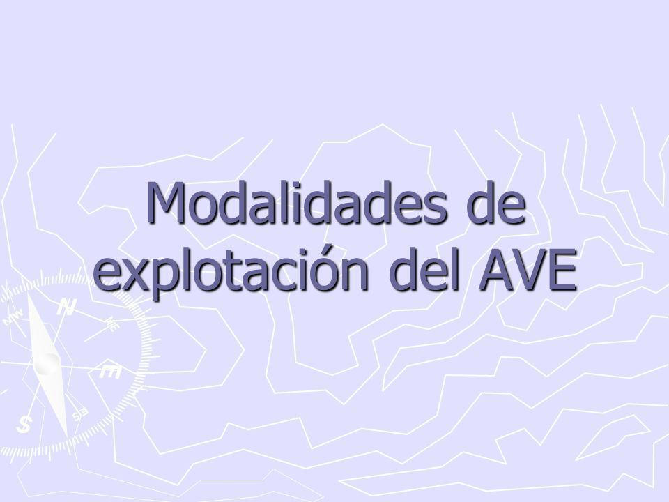 Modalidades de explotación del AVE