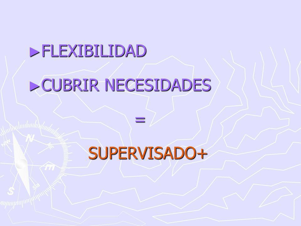 FLEXIBILIDAD FLEXIBILIDAD CUBRIR NECESIDADES CUBRIR NECESIDADES =SUPERVISADO+