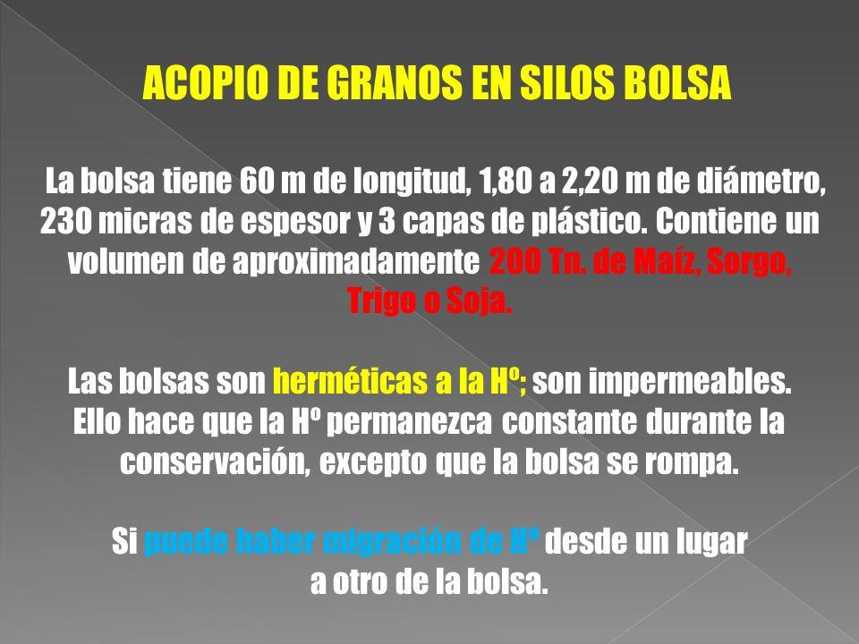 ACOPIO DE GRANOS EN SILOS BOLSA La bolsa tiene 60 m de longitud, 1,80 a 2,20 m de diámetro, 230 micras de espesor y 3 capas de plástico. Contiene un v