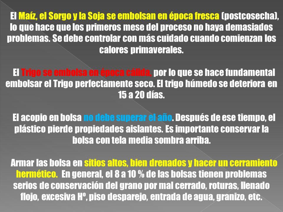 El Maíz, el Sorgo y la Soja se embolsan en época fresca (postcosecha), lo que hace que los primeros mese del proceso no haya demasiados problemas. Se