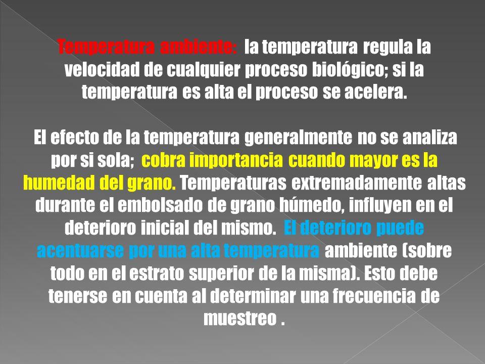 Temperatura ambiente: la temperatura regula la velocidad de cualquier proceso biológico; si la temperatura es alta el proceso se acelera. El efecto de