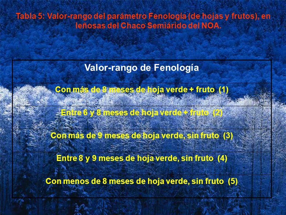 Tabla 5: Valor-rango del parámetro Fenología (de hojas y frutos), en leñosas del Chaco Semiárido del NOA. Valor-rango de Fenología Con más de 8 meses
