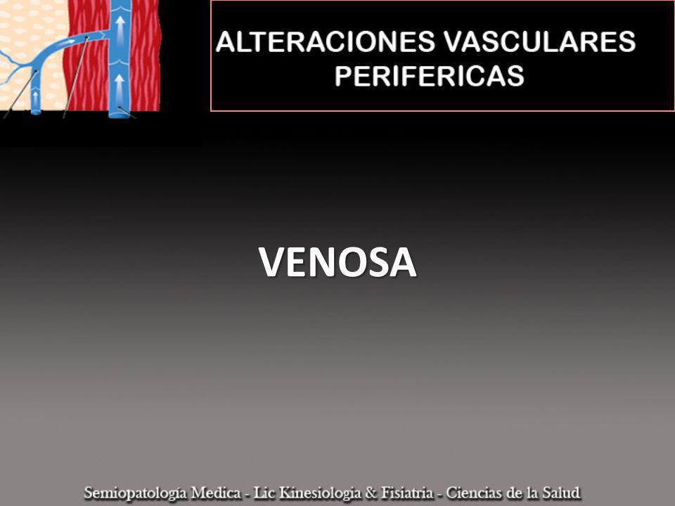 SISTEMA SUPERFICIAL SISTEMA PROFUNDO Venas comunicantes y perforantes Válvulas Fuerzas La pared venosa está compuesta por tres capas: Intima: células endoteliales, membrana basal y lámina elástica Media: contiene predomiantemnete células de músculo liso.