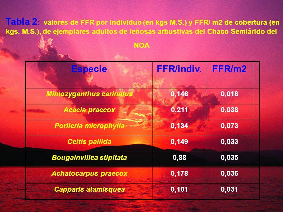 Tabla 2 : valores de FFR por individuo (en kgs M.S.) y FFR/ m2 de cobertura (en kgs. M.S.), de ejemplares adultos de leñosas arbustivas del Chaco Semi