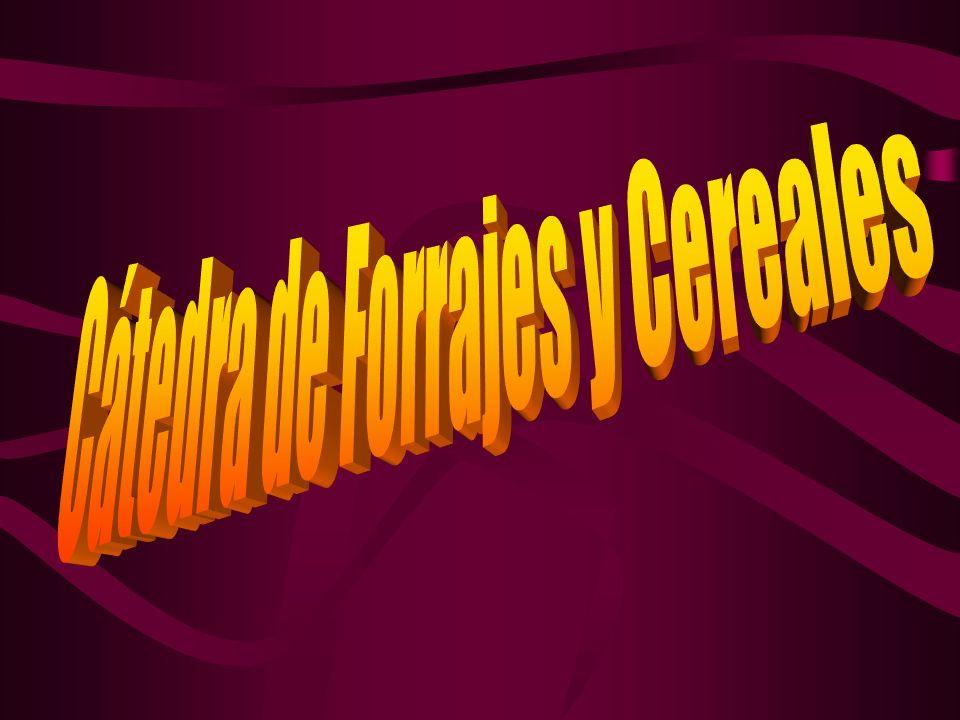 FORRAJICULTURA Introducción y Generalidades Introducción y Generalidades - Concepto de Forraje, Forrajera, - Concepto de Forraje, Forrajera, Pastura, Pastizal, etc.