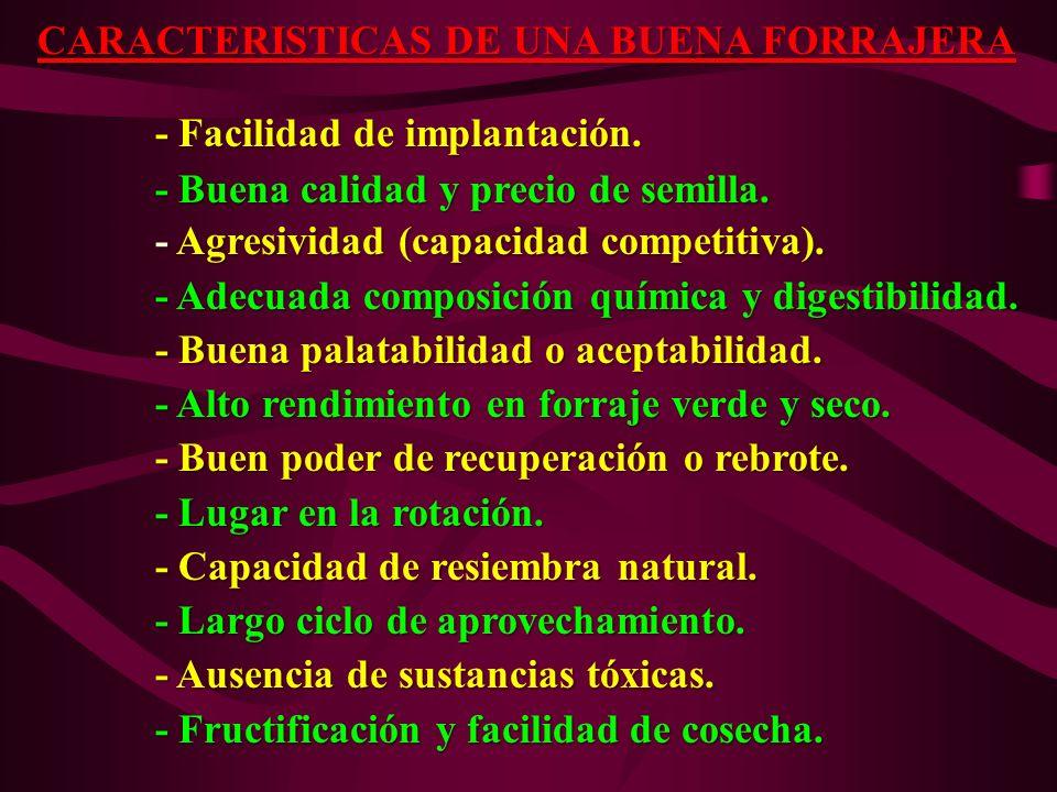 CARACTERISTICAS DE UNA BUENA FORRAJERA - Facilidad de implantación. - Facilidad de implantación. - Buena calidad y precio de semilla. - Buena calidad