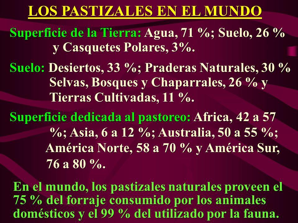 LOS PASTIZALES EN EL MUNDO LOS PASTIZALES EN EL MUNDO Superficie de la Tierra: Agua, 71 %; Suelo, 26 % Superficie de la Tierra: Agua, 71 %; Suelo, 26