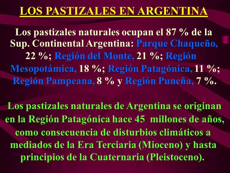 LOS PASTIZALES EN ARGENTINA Los pastizales naturales ocupan el 87 % de la Los pastizales naturales ocupan el 87 % de la Sup. Continental Argentina: Pa