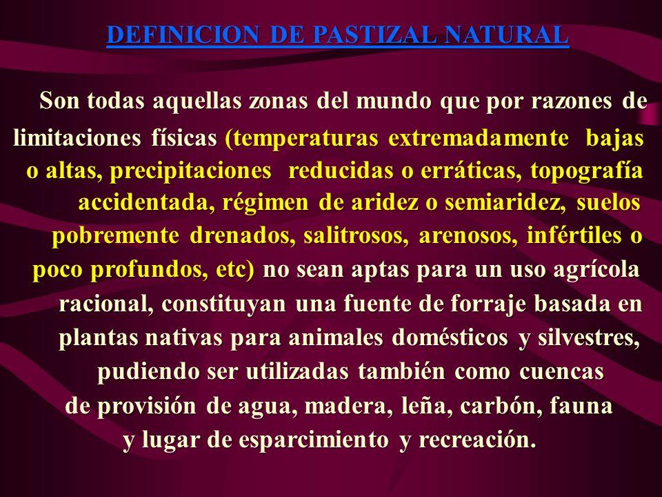 DEFINICION DE PASTIZAL NATURAL Son todas aquellas zonas del mundo que por razones de Son todas aquellas zonas del mundo que por razones de limitacione