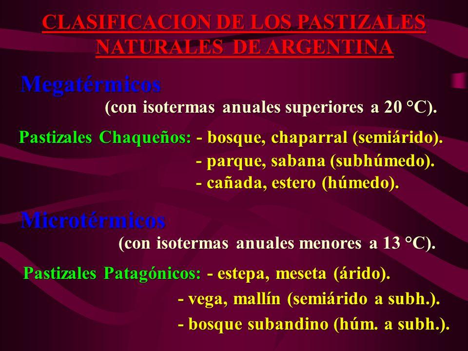 CLASIFICACION DE LOS PASTIZALES NATURALES DE ARGENTINA NATURALES DE ARGENTINA Megatérmicos Megatérmicos (con isotermas anuales superiores a 20 °C). (c